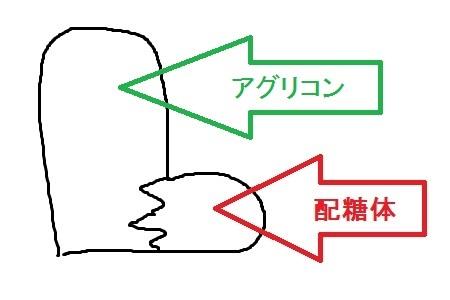 配糖体01